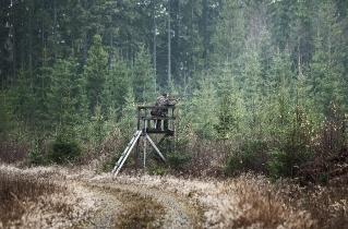 11.bertilhertzberg.jaktfotograf